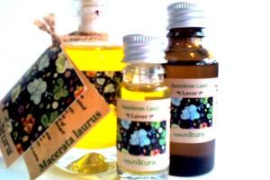 Fitoterapijsko ulje (macerati) od lovora - Sanoleum Lauri (Macerata Lauri)