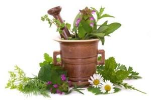 bilje aromatsko