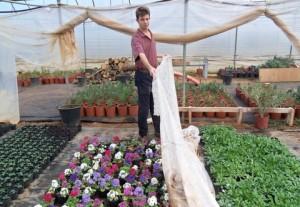 Pokrivanje cvijeća Vrt-Express